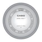 Tapa-Casio-2